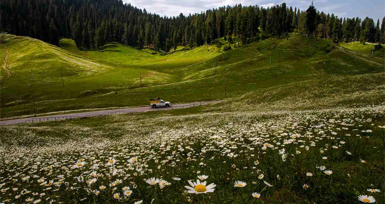 Gulmarg photos in september 21 Incredible Detailed Ceiling Design Ideas From EXPERTS